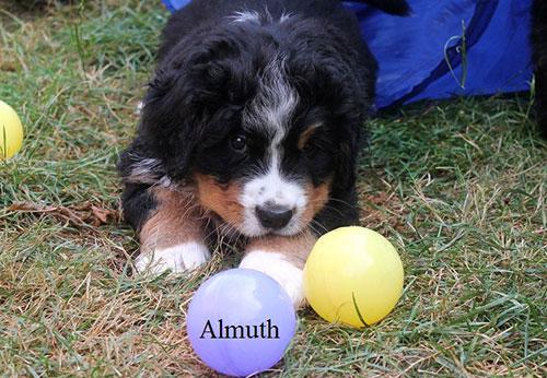 Almuth mit 6 Wochen
